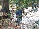 Sprzątanie po powodzi na Dolnym Śląsku
