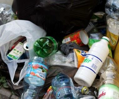 Śmieciowa reforma to niewypał? W Śląskiem nie mają wątpliwości