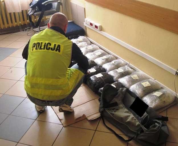 /Policja