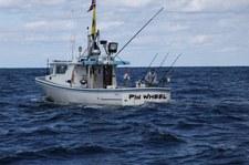 dziś, 27 mar 20:00 (National Geographic Channel) - Stawka warta tuńczyka