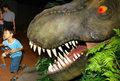 Dinozaury powracają!