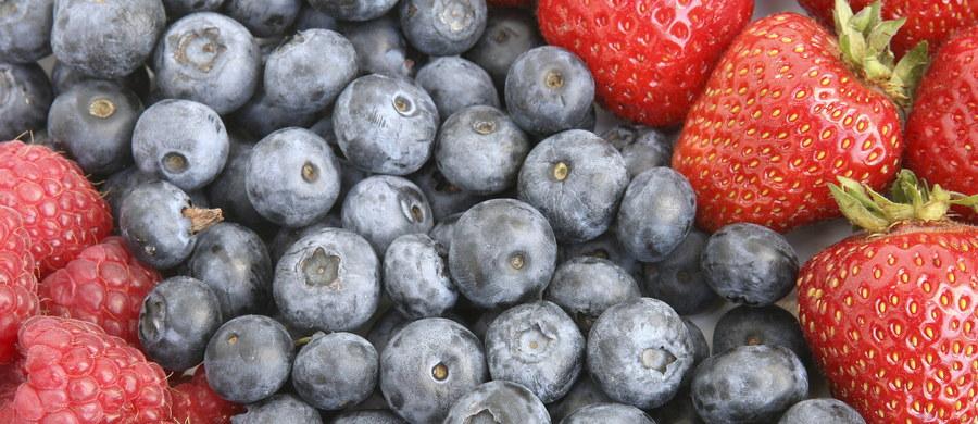 """Prawie 4 mln euro przeznaczone zostanie na promocję spożycia owoców jagodowych: malin, truskawek, czarnych porzeczek i borówek amerykańskich. Kampania """"Niezwykłe właściwości zwykłych owoców"""" potrwa trzy lata. Kampania prowadzona w Polsce, Czechach, Austrii, Szwecji i Finlandii."""