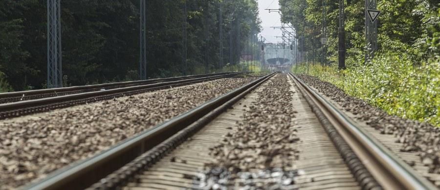 """Na 65. kilometrze trasy kolejowej Wrocław -- Jelenia Góra pojawiły się policyjne patrole. To prawdopodobnie tam między Świebodzicami  a Wałbrzychem jest poszukiwany """"złoty pociąg""""."""