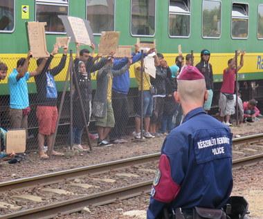 Uchodźcy uciekają z węgierskiego Bicske. Zamierzają iść pieszo do Niemiec