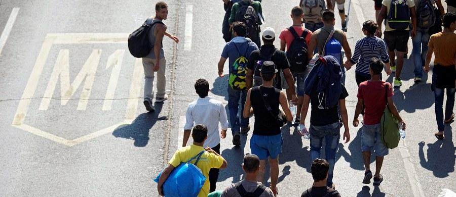 Krytyka Polski w związku z uchodźcami jest coraz większa. Po raz kolejny odpowiedzialny w belgijskim rządzie za politykę azylową Theo Francken atakuje nasz kraj zarzucając nam brak solidarności.