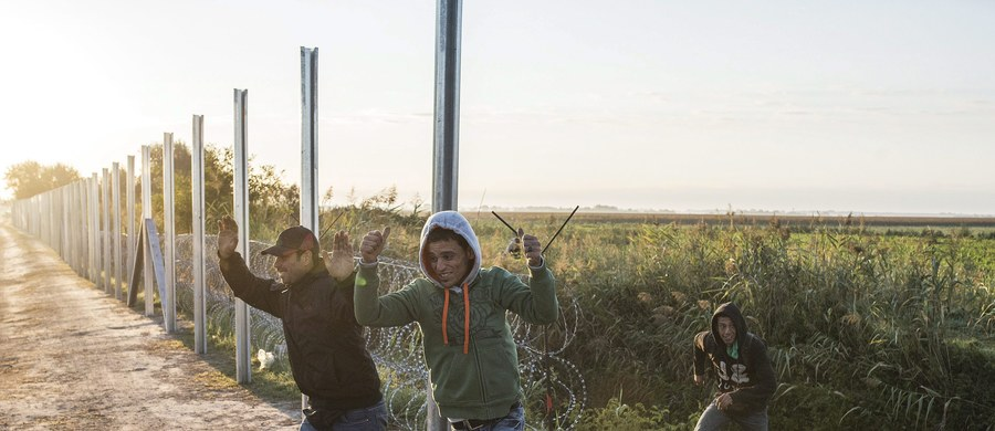 """""""Ta skala nie jest tak ogromna, że ona wpływa na ustrój państwa i na strategiczne decyzje. To nie jest coś, co spowoduje zmiany w Polsce"""" - mówi w Kontrwywiadzie RMF FM szef MSZ Grzegorz Schetyna pytany przez słuchaczy o referendum ws. przyjmowania uchodźców. """"Poza tym po ostatniej lekcji referendalnej uważam, że tylko o strategicznych rzeczach powinniśmy rozmawiać przez referendum i pytać Polaków o ich zdanie""""- dodaje gość RMF FM. """"Całą resztę powinniśmy rozstawiać politykom"""" - uważa Schetyna."""