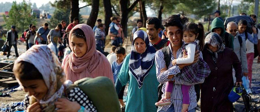 Setki uchodźców omijają Danię, gdzie od środy wstrzymano ruch kolejowy na granicy z Niemcami, i udają się na promy kursujące do Szwecji. Od wczoraj do Trelleborga oraz Goeteborga przybyło 600 imigrantów - podał w piątek Urząd ds. Migracji.