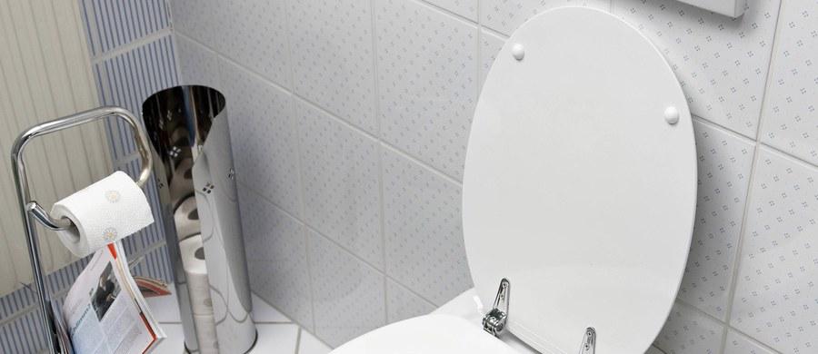 Deska do krojenia jedzenia bardziej brudna niż muszla klozetowa? Ciężko uwierzyć, ale w domu są rzeczy, na których jest o wiele więcej bakterii niż w toalecie.