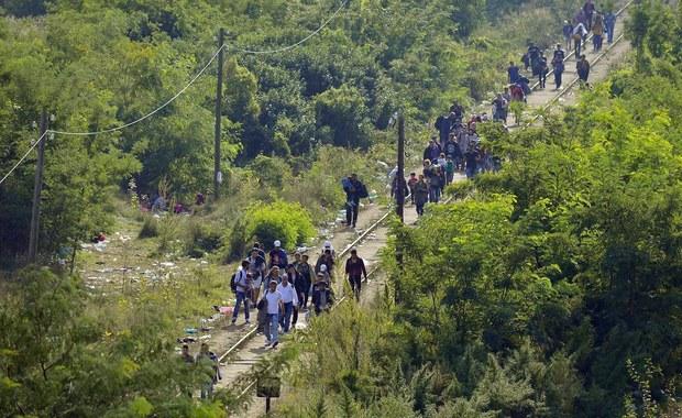 Czechy wzmocnią patrole policyjne na granicy z Austrią w związku z decyzją Niemiec o wprowadzeniu tymczasowych kontroli granicznych ze względu na napływ migrantów. Informację podał czeski minister spraw wewnętrznych Milan Chovanec.