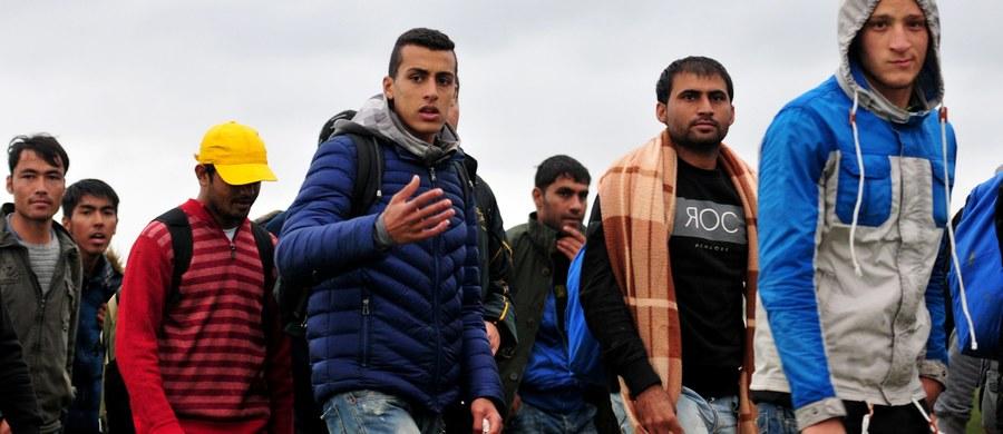 """""""Trzeba pomagać finansowo, humanitarnie poza granicami Polski, ale trzeba też respektować decyzje, które podjął rząd pani Ewy Kopacz"""" – mówi w Kontrwywiadzie RMF FM rzecznik kampanii PiS Marcin Mastalerek pytany przez słuchaczy o stanowisko jego partii w sprawie uchodźców. """"Jesteśmy poważnym państwem. Jeśli jest jakaś decyzja rządu, to można próbować ją renegocjować, ale pewne decyzje zapadły"""" – dodaje."""