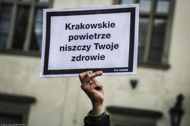 . /Fot. Beata Zawrzel /Reporter