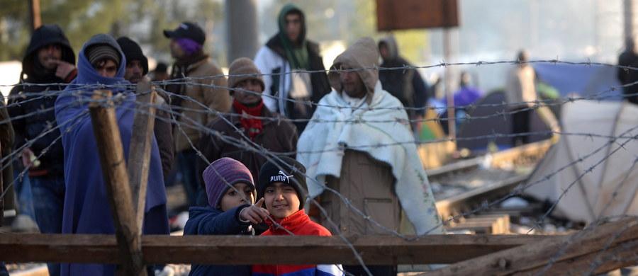 Do starć między policją a migrantami doszło w na granicy Grecji i Macedonii, gdzie macedońska armia rozpoczęła w sobotę budowę metalowego ogrodzenia, by kontrolować ruch migrantów. Czterech policjantów zostało rannych.