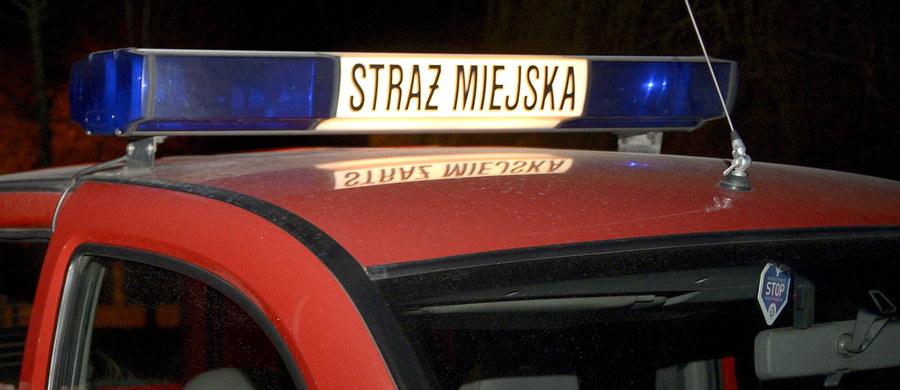 Od początku 2016 r. strażnicy miejscy w Rudzie Śląskiej pomagają mieszkańcom w uruchamianiu samochodów, którym na mrozie niedomagają akumulatory. Wystarczy dzwonić na numer 986; strażnicy powinni przyjechać niezależnie od pory, przez całą dobę.