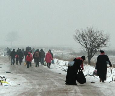 MSWiA: Większość uchodźców ma trafić do Polski w 2017 r.