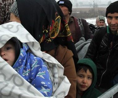 Polska gotowa przyjąć do końca marca 100 uchodźców z obozów w Grecji