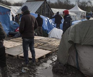 Kukiz'15 chce referendum ws. przyjmowania uchodźców