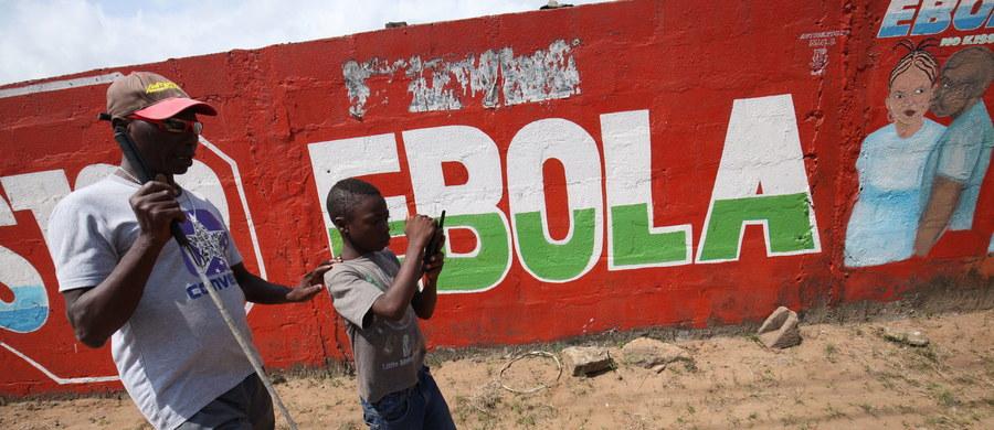 Międzynarodowa Organizacja Zdrowia (WHO) ogłosi dzisiaj koniec epidemii gorączki krwotocznej wywoływanej przez wirus Ebola w Liberii. To jednocześnie zwycięstwo całej Afryki Zachodniej nad najcięższą epidemią tego wirusa od momentu jego wykrycia w 1976 roku.