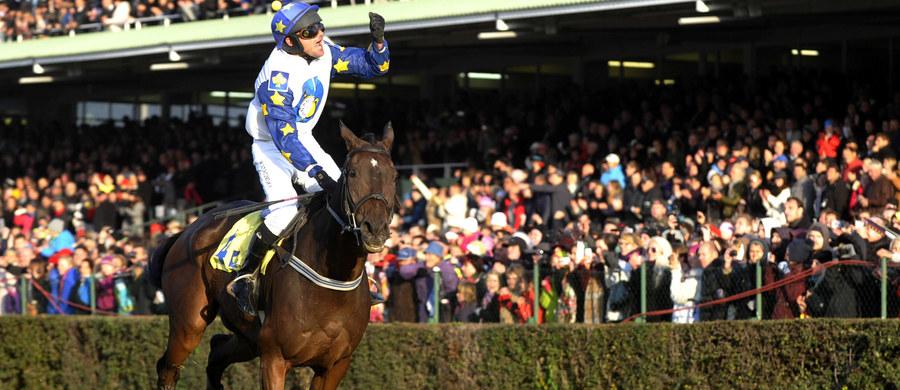 """Nikas - zwycięski koń ubiegłorocznej 125. edycji gonitwy z przeszkodami Wielka Pardubicka został przyłapany na dopingu. W jego organizmie wykryto podczas badania próbek """"A"""" i """"B"""" zabronione środki - kofeinę i teobrominę."""