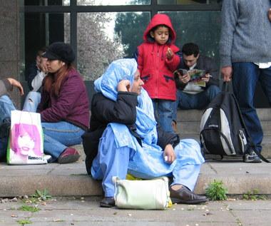 Holenderski polityk: Uchodźcy to bomby testosteronu. Powinniśmy ich zamykać w ośrodkach