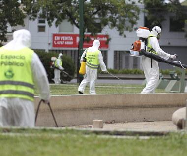 """Wirus Zika: KE zaleca ostrzeganie podróżnych. """"Nie należy siać paniki - trzeba informować o ryzyku"""""""