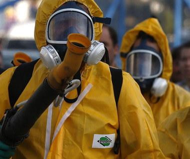 Przypadki zarażenia wirusem Zika we Francji. Eksperci ostrzegają przed epidemią