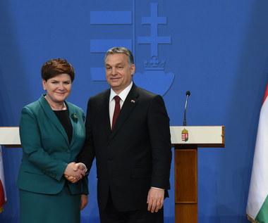 """Spotkanie Szydło - Orban. """"Liczę na to, że współpraca będzie się zacieśniać"""""""