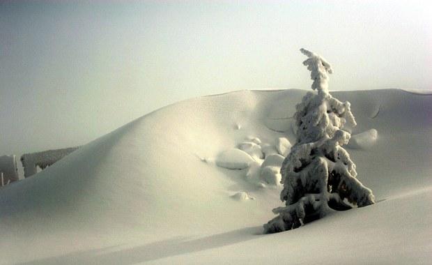 Do drugiego stopnia podnieśli dziś zagrożenie lawinowe na północnych stokach Babiej Góry w Beskidach ratownicy grupy beskidzkiej GOPR. W ciągu minionej doby spadło tam ponad 30 cm śniegu. Opadom towarzyszył silny wiatr.