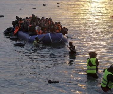 Ogromny statek wycieczkowy będzie ośrodkiem dla imigrantów
