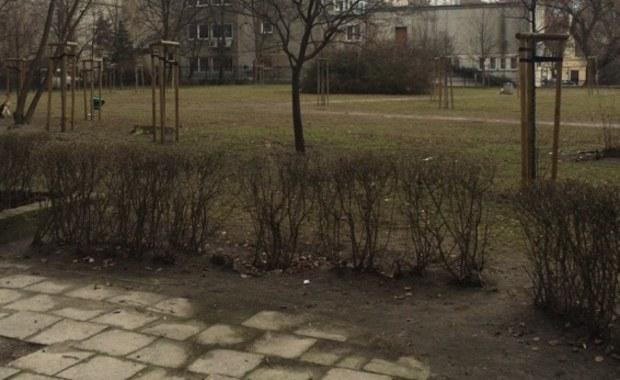 """Imię Psa Fafika, czyli fikcyjnej postaci z czasów PRL-u może nosić jeden ze skwerów na warszawskiej Woli, położony między ulicami Ogrodową, Chłodną i Żelazną. Kilkuset mieszkańców podpisało już w tej sprawie specjalną petycję. """"Czekaliśmy na ten skwer ponad rok. Bardzo dużo ludzi przychodzi tu z psami na spacer. Tu można psa swobodnie puścić, psy się znają, nie gryzą"""" - mówią naszemu reporterowi mieszkańcy tych okolic."""