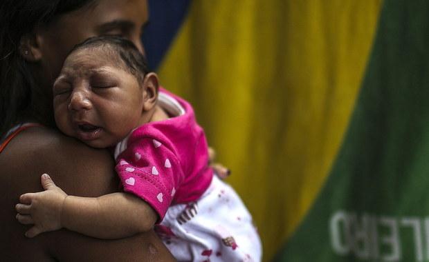 """Wirus Zika wyjątkowo skutecznie rozwija się i powiela w komórkach macierzystych tkanki nerwowej, które potem powinny przekształcić się w korę mózgową - piszą na łamach czasopisma """"Stem Cell"""" naukowcy z Johns Hopkins University i Florida State University. Infekcja prowadzi jednak do śmierci lub poważnego upośledzenia rozwoju tych komórek. To może sugerować przyczyny, dla których kobiety zarażone w ciąży wirusem Zika rodzą dzieci dotknięte małogłowiem."""