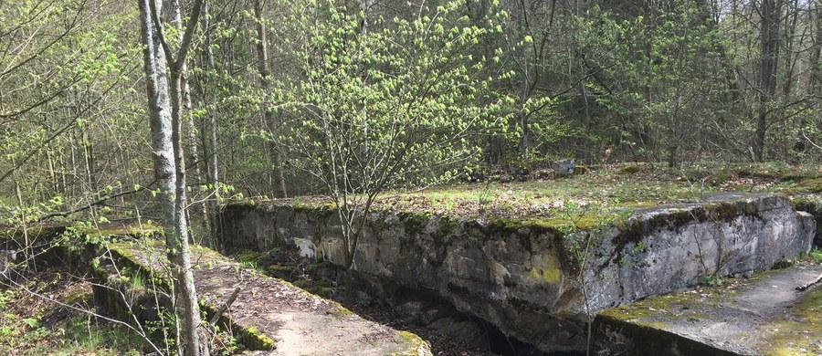 Ukryte pomieszczenie odnalezione w kompleksie bunkrów w Mamerkach na Mazurach może być większe niż wcześniej zakładano. Według opiekuna obiektu może się tam znajdować słynna Bursztynowa Komnata.