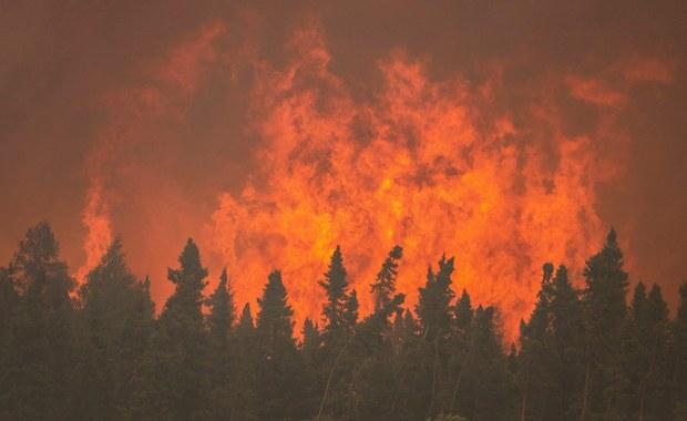 """Olbrzymi, niekontrolowany pożar lasów w północnej części kanadyjskiej prowincji Alberta zmusił do ewakuacji prawie wszystkich z 80 tysięcy mieszkańców miasta Fort McMurray - poinformowały lokalne władze. """"To jest największa ewakuacja przed pożarem w historii prowincji"""" - powiedziała premier Alberty Rachel Notley."""