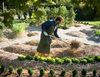 600 samobójstw rolniktów w ciągu trzech miesięcy