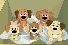 Pound Puppies: Psia Paczka