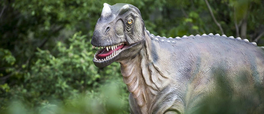 Dinozaury wyginęły przez... sadzę, która 66 milionów lat temu, po uderzeniu asteroidy, dostała się w górne warstwy atmosfery Ziemi. To najnowsza, przełomowa hipoteza japońskich naukowców.