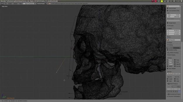 Starożytna mumia została przywrócona do życia! Wszystko dzięki technologii 3D.   Naukowcy zrekonstruowali czaszkę – liczącego prawie 2000 lat - peruwiańskiego władcy, nazywanego Panem z Sipan. Mumia ta została odkryta w 1987 roku, a odkrycie zostało uznane za jedno z dziesięciu najważniejszych znalezisk XX wieku.   Uważa się, że Pan z Sipan był  jednym z królewskich władców tajemniczej cywilizacji Moche, która kwitła w Peru między 50 a 700 r. n.e.