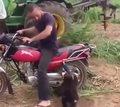 Małpa chciała się przejechać na motocyklu