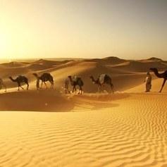 Dzika przyroda Bliskiego i Środkowego Wschodu