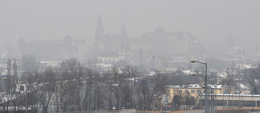 Ciekawe zjawisko można od wczoraj obserwować na mapach pokazujących zanieczyszczenie powietrza w Krakowie. Jak się okazuje, potwierdza się teoria, że zanieczyszczenia nad miastem pochodzą z ościennych gmin! Pokazuje to zwłaszcza mapa niezależnych pyłomierzy.
