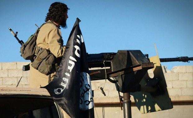 Francuskie służby antyterrorystyczne oceniają, że około 700 obywateli Francji walczy w szeregach dżihadystycznego Państwa islamskiego w Iraku i Syrii. Oprócz tego około tysiąca nadal przebywa we Francji, ale pragnie przyłączyć się do dżihadu.