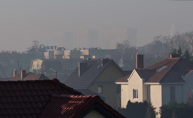 Narodowy Instytut Zdrowia Publicznego potwierdza statystyki Światowej Organizacji Zdrowia, według której rocznie przez choroby związane z zanieczyszczeniem powietrza przedwcześnie umiera ponad 40 tysięcy osób. To oznacza, że powietrze zabija rocznie dwa razy więcej Polaków niż łącznie ginie w wypadkach drogowych (ponad 3 tysiące), przez utonięcie (1 tysiąc), a także w wyniku zabójstw (pół tysiąca) i samobójstw (6 tysięcy).