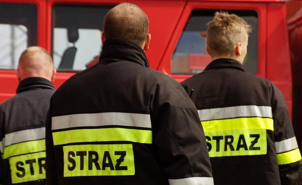 11 osób zostało rannych w wypadku w Koniaczowie niedaleko Jarosławia na Podkarpaciu. Bus zderzył się tam z osobówką.
