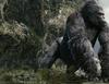 Zobacz trailer: Kong: Wyspa czaszki