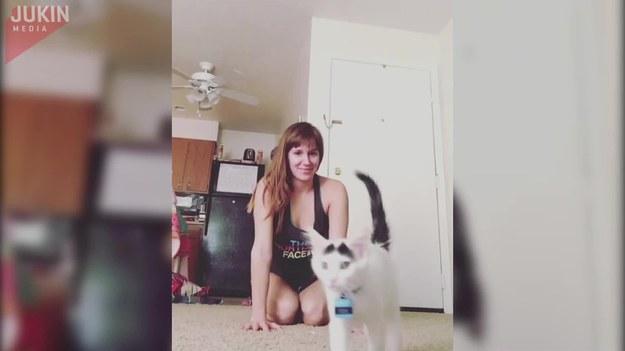 Dziewczyna postanowił poćwiczyć jogę w swoim salonie. Myślała, że kot, który kręcił się w pobliżu, da jej spokój. Szybko przekonała się jednak, że nie był to dobry pomysł.