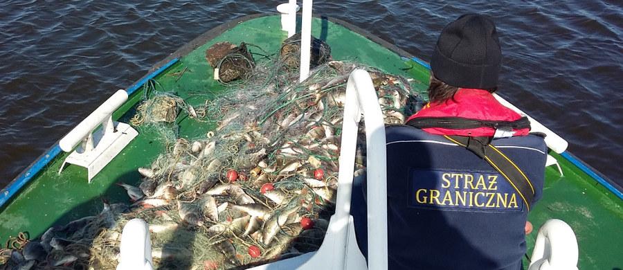 Jak informuje dziennikarka RMF FM Aneta Łuczkowska, strażnicy graniczni wydobyli z basenu portowego w Świnoujściu prawie ćwierć kilometra nielegalnych sieci rybackich. Służby zawiadomili wędkarze, którzy zauważyli, że ktoś nielegalnie wyłapuje ryby w okolicy Karsiboru.