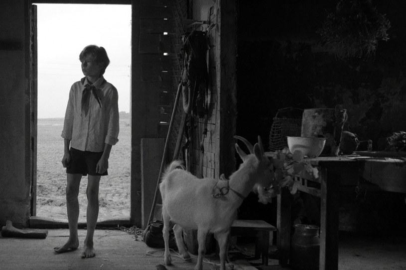 """""""Świt"""" w reżyserii Laili Pakalniny, łotewsko-estońsko-polska produkcja ze zdjęciami Wojciecha Staronia i Wiktorem Zborowskim w obsadzie, to historia inspirowana życiem Pawlika Morozowa, chłopca który doniósł na własnego ojca do NKWD. Film wszedł w piątek, 31 marca, na ekrany kin."""