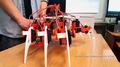 Młodzi konstruktorzy robotów.