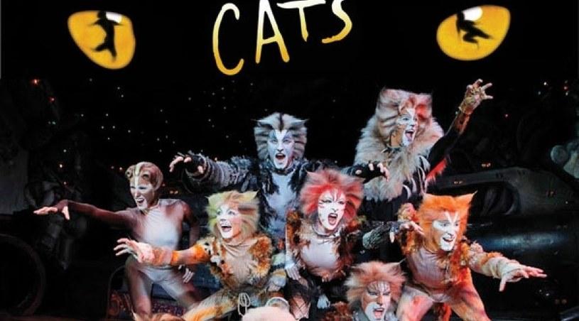 """Ten musical to fenomen na światową skalę. Na Broadwayu jest wystawiany nieprzerwanie od 18 lat, w londyńskim West Endzie od 21. Na całym świecie """"Cats"""" obejrzało  ponad 50 milionów widzów! W piątek, 12 maja, artyści z Broadwayu w finale """"Tańca z Gwiazdami"""" zaprezentują jego fragment wraz ze światowym hitem - piosenką """"Memory""""."""