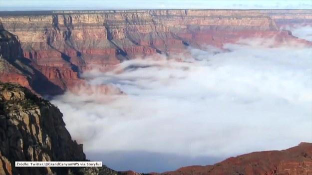 Arizona, USA. Niecodzienne zjawisko udało się zarejestrować służbom w Parku Narodowym Wielkiego Kanionu Kolorado w stanie Arizona. Kanion został spowity morzem chmur. To skutek zjawiska nazywanego inwersją temperatury. Występuje ono w rejonach górzystych, gdy ciepłe powietrze nagrzane przy powierzchni ziemi unosi się i na wyższych wysokościach zostaje schłodzone, po czym ponownie opada na powierzchnię. (STORYFUL/x-news)