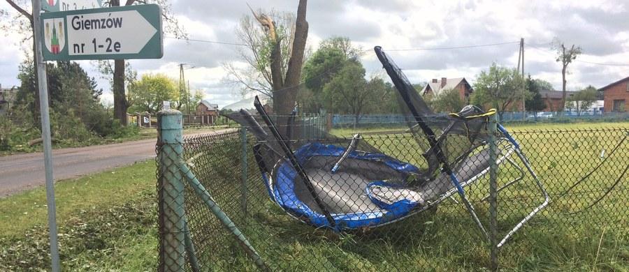 Linie energetyczne leżące na ziemi, potężne drzewa połamane jak zapałki lub wyrwane z korzeniami - to obraz klęski po wtorkowych burzach i przejściu trąby powietrznej w okolicach gminy Brójce koło Łodzi.
